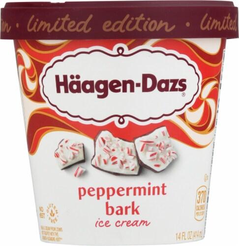 Haagen-Dazs Triple Chocolate Fudge Cookie Ice Cream Perspective: front