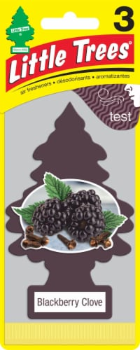 Little Trees Blackberry Clove Car Air Freshener Perspective: front