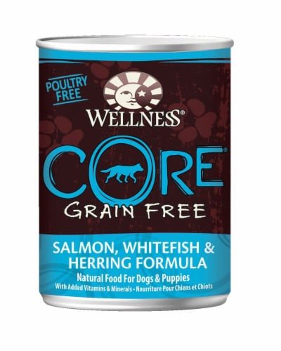 Wellness Salmon Whitefish Wet Dog Food Perspective: front