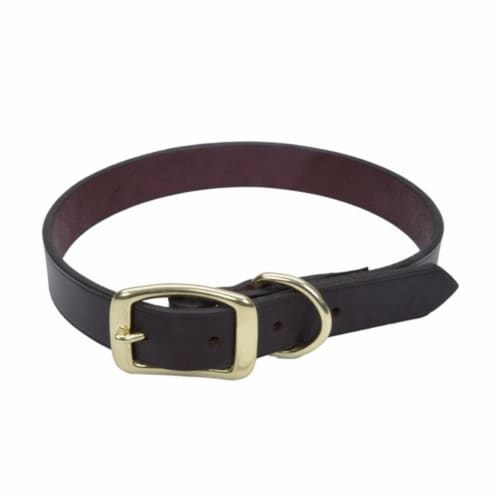 Coastal Pet 3812-18 Latigo Leather Town Dog Collar with Solid Brass Hardware - 0.75 x 18 in. Perspective: front