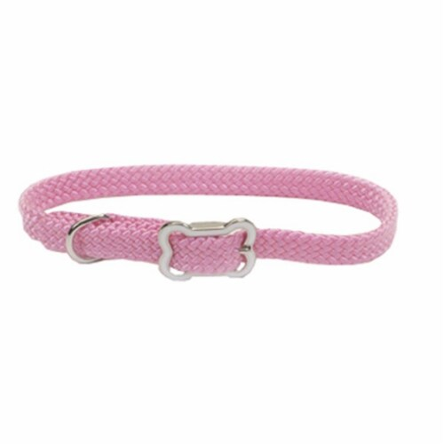 Coastal Pet Products CO85021 8501 12 in. Pink Sunbrust Collar with Bone Perspective: front