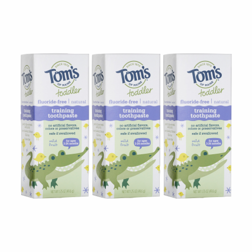 Tom's of Maine Mild Fruit Toddler Training Fluoride Free Toothpaste 3 Count Perspective: front