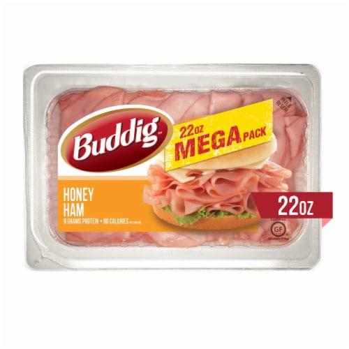 Buddig Honey Ham Mega Pack Perspective: front