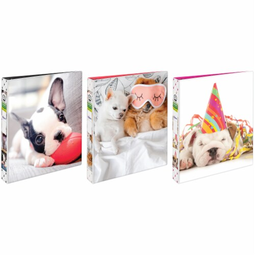 Avery Furry Friends Binder - Assorted Perspective: front