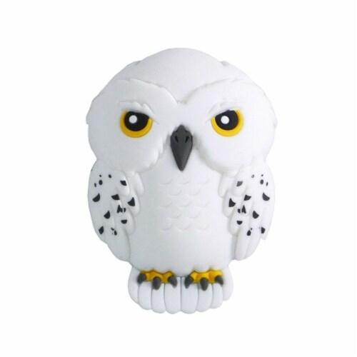 Harry Potter Hedwig 3D Foam Magnet Perspective: front