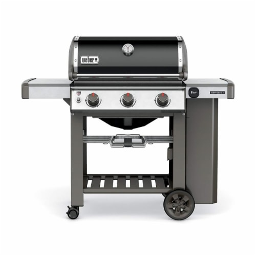 Weber-Stephen Products 258697 S315 Stainless Steel LP Gas Grill Perspective: front