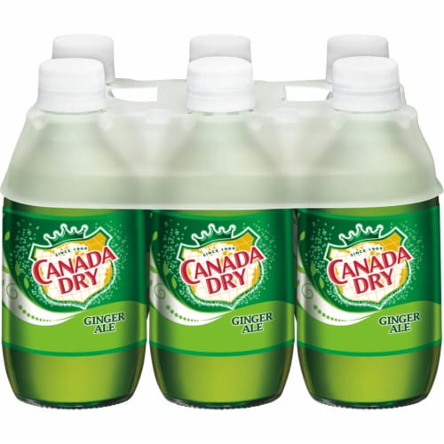 Canada Dry Ginger Ale Perspective: front