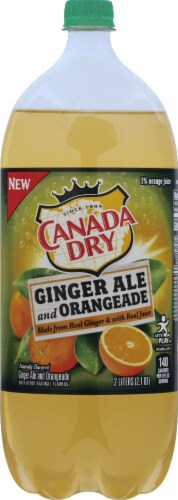 Canada Dry Ginger Ale and Orangeade Perspective: front