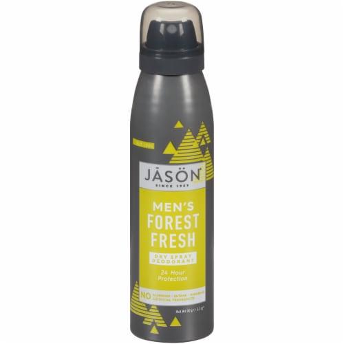 Jason Men's Forest Fresh Dry Spray Deodorant Perspective: front