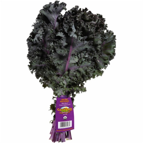 Grimmway  Organic Red Kale Perspective: front