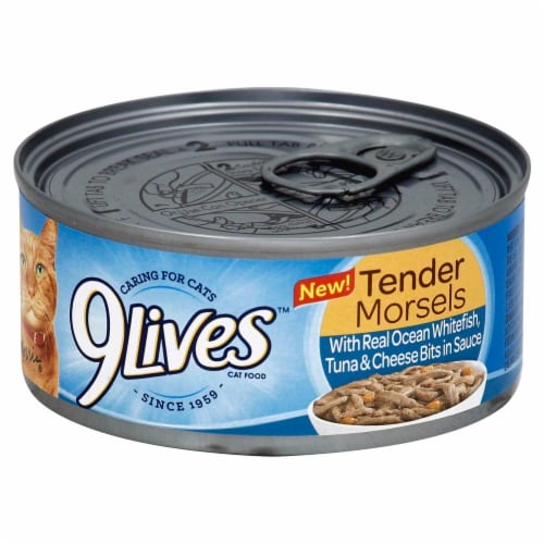 9Lives Tender Morsels with Ocean Whitefish Tuna & Cheese Bits Wet Cat Food Perspective: front