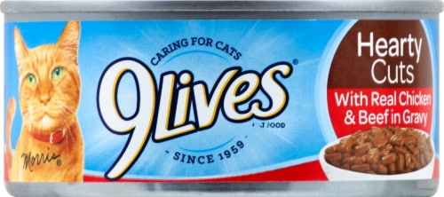 9Lives Tender Slices with Beef in Gravy Wet Cat Food Perspective: front