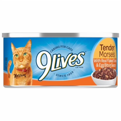 9Lives Tuna & Egg Bits in Sauce Wet Cat Food Perspective: front
