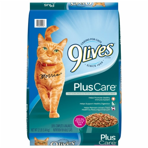 9Lives PlusCare Dry Cat Food Perspective: front