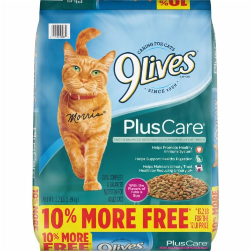 9Lives Dry Tuna & Egg Cat Food Perspective: front