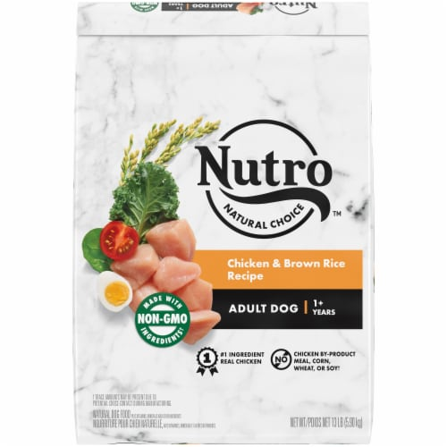 Nutro Wholesome Essentials Chicken Brown Rice & Sweet Potato Recipe Adult Dry Dog Food Perspective: front