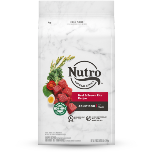 Nutro Feed Clean Wholesome Essentials Beef & Brown Rice Recipe Adult Dog Food Perspective: front