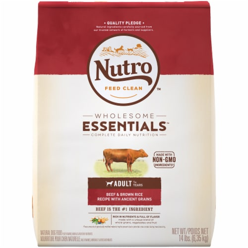 Nutro Wholesome Essentials Beef & Brown Rice Adult Dry Dog Food Perspective: front
