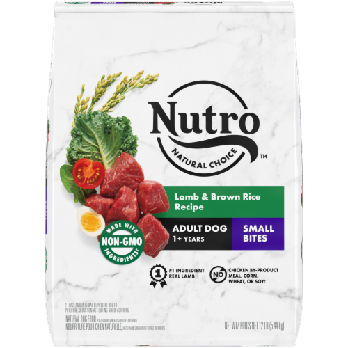 Nutro Wholesome Essentials Small Bites Lamb & Rice Recipe Adult Dry Dog Food Perspective: front
