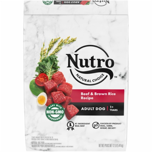 Nutro Wholesome Essentials Beef & Brown Rice Recipe Adult Dry Dog Food Perspective: front