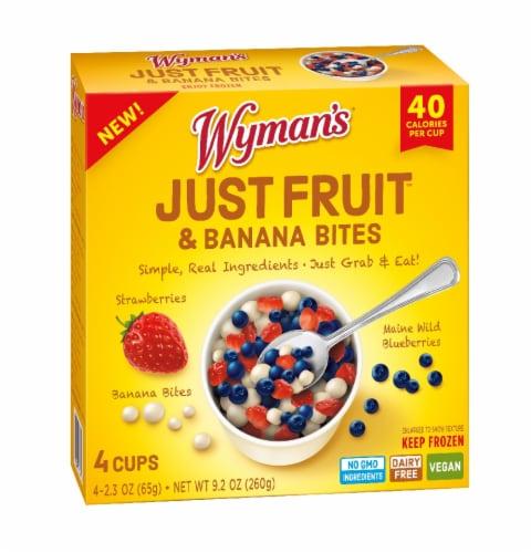 Wyman's Just Fruit Strawberries Maine Wild Blueberries & Banana Bites Perspective: front