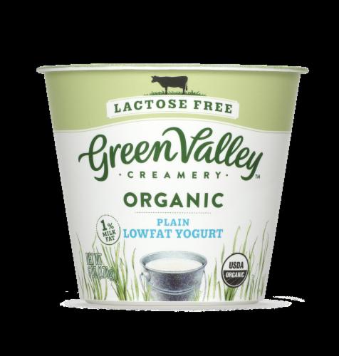 Green Valley Lactose Free Organic Plain Lowfat Yogurt Perspective: front