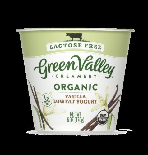 Green Valley Organic Lactose Free Vanilla Lowfat Yogurt Perspective: front