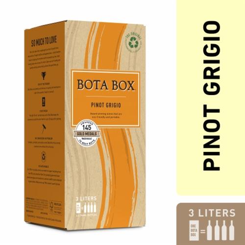 Bota Box Pinot Grigio White Wine Perspective: front