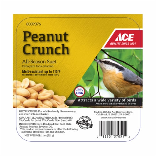 Ace Peanut Crunch Assorted Species Suet Beef 11 oz. - Case Of: 12; Perspective: front