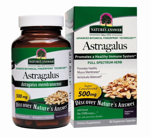 Nature's Answer Astragalus Root Vegetarian Caps 500mg Perspective: front
