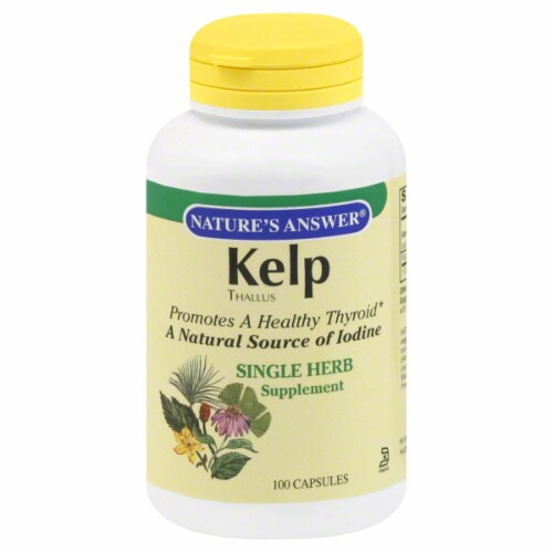 Nature's Answer Kelp Thallus Single Herb Supplement Perspective: front