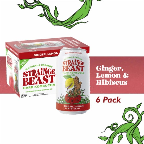 Strainge Beast Ginger Lemon & Hibiscus Hard Kombucha Perspective: front