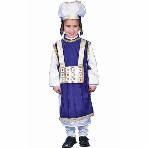 Dress Up America 225-T Jewish High Priest Costume - Toddler T4 Perspective: front