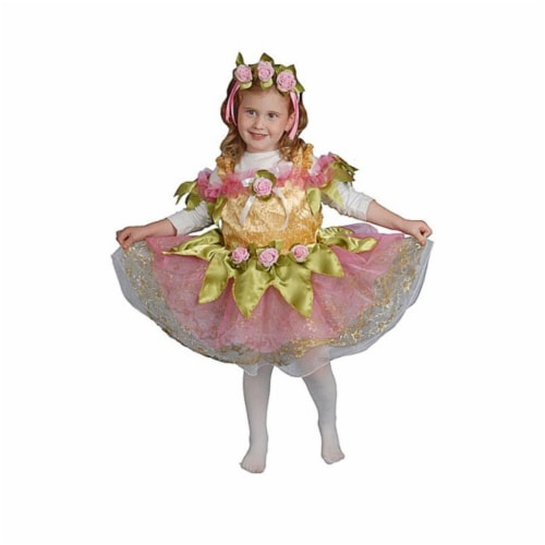 Dress Up America 419-L Ballerina Girls Costume, Large - Age 12 to 14 Perspective: front
