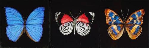 JLA Home Butterflies Wall Decor - Assorted Perspective: front