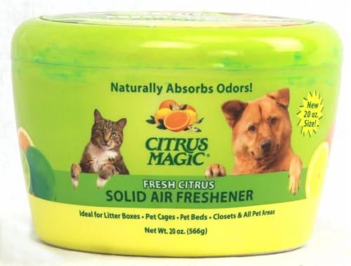 Citrus Magic Citrus Solid Air Freshener Perspective: front