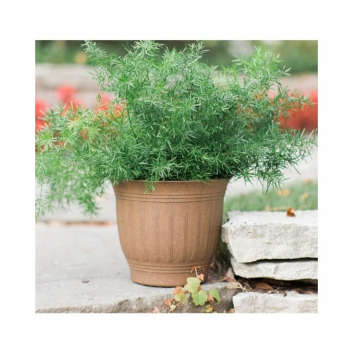 Bloem 7005747 7.3 x 8.8 in. Dia. Plastic Colonnade Planter, Brown Perspective: front