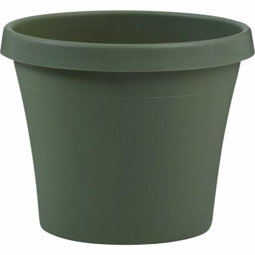 Bloem Terra Living Green 5.5 In. H. x 6 In. Dia. Polypropylene Planter 50406 Perspective: front