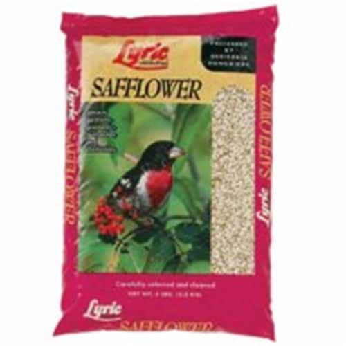 Lebanon Seaboard 26-47275 Lyric Safflower Seed - 5 Lbs. Perspective: front