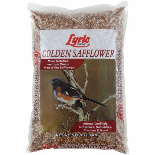 Lyric Assorted Species Wild Bird Food Safflower Seeds 5 lb. - Case Of: 1; Perspective: front