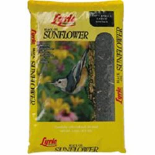 Lebanon Seaboard 2647279 Black Oil Sunflower Seed - 5 Lbs. Perspective: front