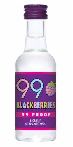 99 Brand Blackberries Liqueur Perspective: front