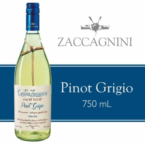 Cantina Zaccagnini Pinot Grigio White Wine Perspective: front