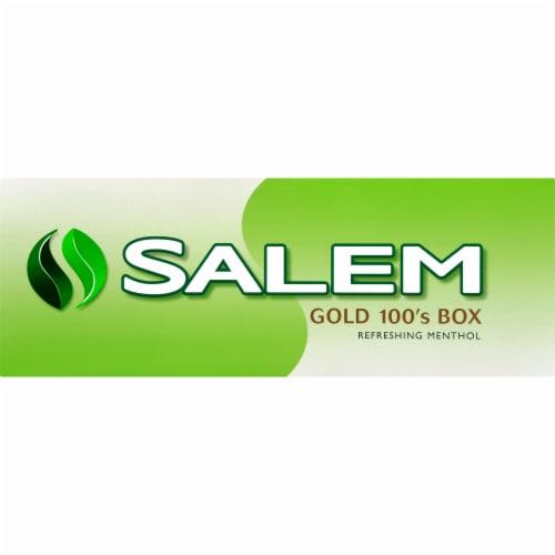 Salem Gold 100's Menthol Cigarettes Perspective: front