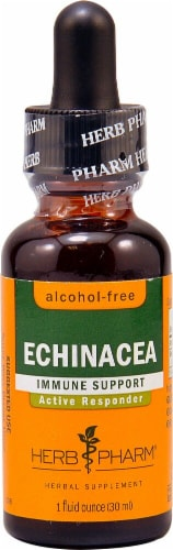 Herb Pharm  Echinacea Immune Support Alcohol Free Herbal Supplement Perspective: front