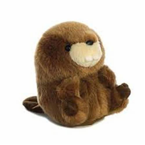 """Bucky Beaver Rolly Pet 5"""" Stuffed Animal, Small Perspective: front"""