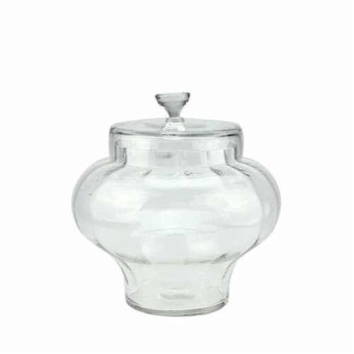 NorthLight 11 in. Transparent Segmented Glass Container with Lid Perspective: front