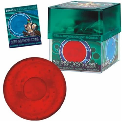 Tedco Toys 32371-RED Bio Signs Red Blood Cell Model Perspective: front