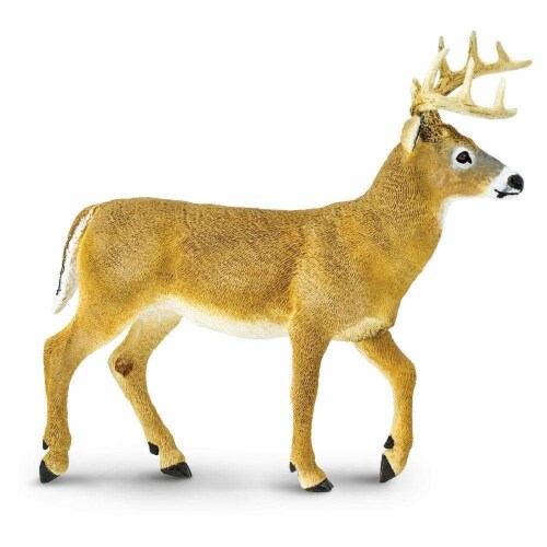 Safari Ltd®  Whitetail Buck Toy Figurines Perspective: front