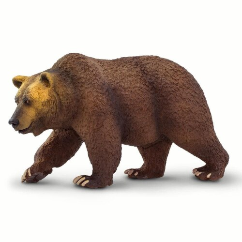 Grizzly Bear Perspective: front